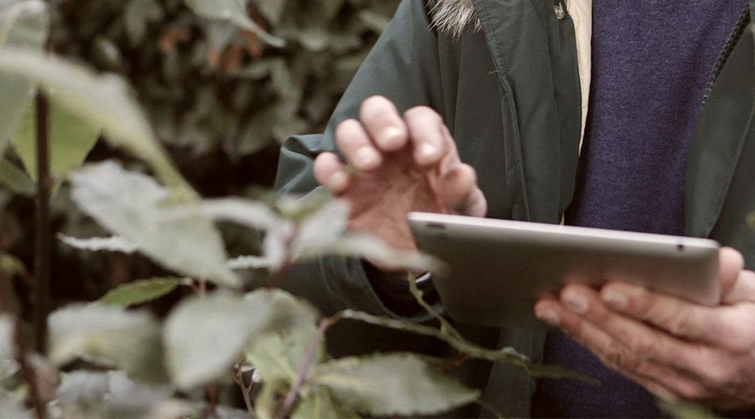 man holding tablet in garden